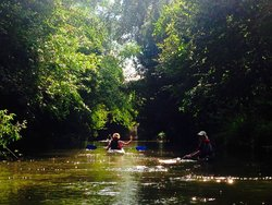 Oxford Kayak Tours