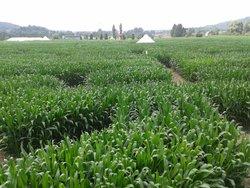 Le Labyrinthe de Barvaux-Durbuy