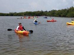 Orchid Island Bikes & Kayaks