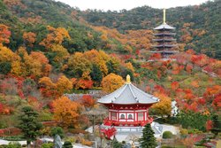 The Royal Grand Hall of Buddhism
