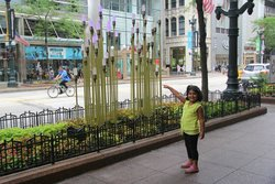 on magnificent mile