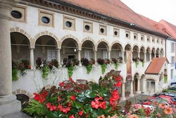 Pokrajinski muzej Celje