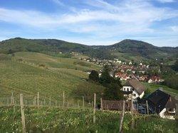 Baden Wine Road (Badische Weinstrasse)