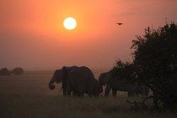 Tramonto Amboseli