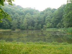 Trojmiejski Landscape Park