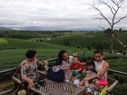 Suantangja Travel - Private Day Tours