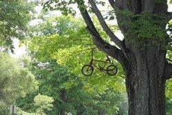 William Field Memorial Hart-Montague Trail