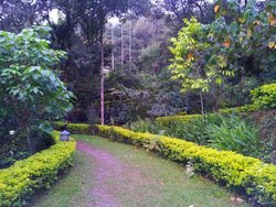 Landscaped and green surroundings - Resort