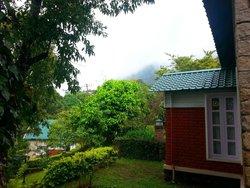 Cottage - Surroundings
