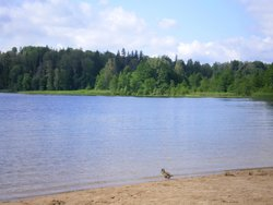 Lake Puhajarv Park