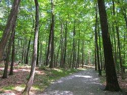 Tourne County Park
