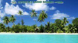 Experience Grand Bahama Island with Hida