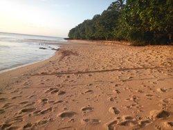 Mamangal Beach