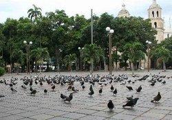 Plaza Parque Santander