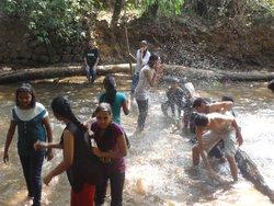 Atreya Vedic and Spice Plantation