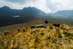 Parque Nacional Natural Sumapaz