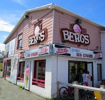 Berg's Famous Ice Cream