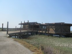 Lucy Evans Baylands Nature Interpretive Center