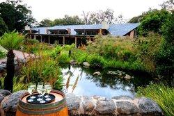 moyo Kirstenbosch