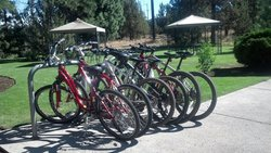 Life Cycle Bikes