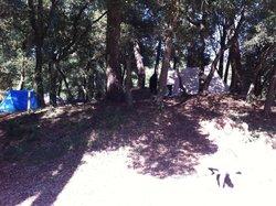 Onze plek op de camping