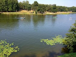 Kuzminki Park of Culture and Leisure