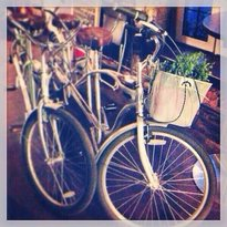 Tandem bikes for rent Our Tandem Bike