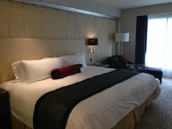 Very large king bed!