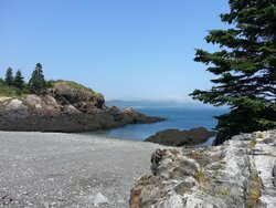 Bog Brook Cove Preserve