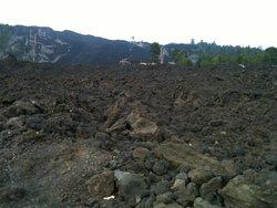 Etna Wild