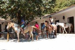 Deres Horse Riding Center