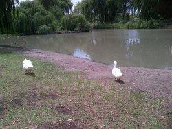 Bokkie Park