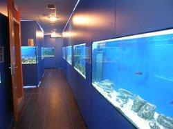 Adriatic aquarium Baška