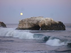 Santa Cruz Surf Academy