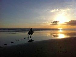 Caballo Azul  Horse Tours