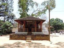 Pattini Davalaya