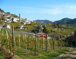 Azienda Agricola Vigneto Vecio