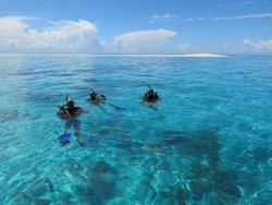 Kasa Divers