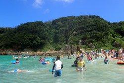 Kujupama Beach