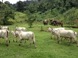 Rancho Tipico Don Juan