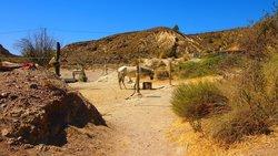 Rancho Luz del Sol