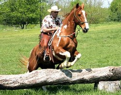 JBiT Ranch