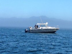 Salmon Eye Charters - Day Adventures