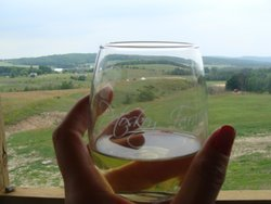 Petoskey Farms Vineyard & Winery
