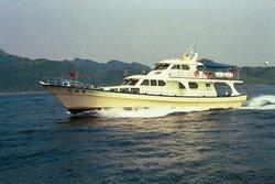 Jin 36 whale watching boat