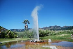 Old Faithful Geyser of California