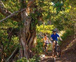 Bike Park Maui