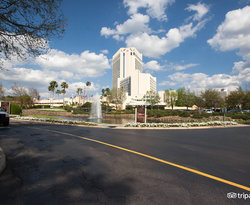 The Hilton Orlando Buena Vista Palace Disney Springs