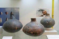 Museo di Preistoria e Protostoria della Valle del Fiora di Manciano