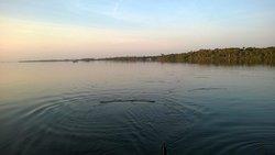 Mosquito Lagoon Fishing & Eco-Tours